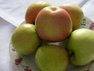 Як мати свіжі овочі до Великоднього столу