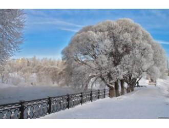 """""""Січень рік розпочав, а зиму навпіл розділяє…"""""""