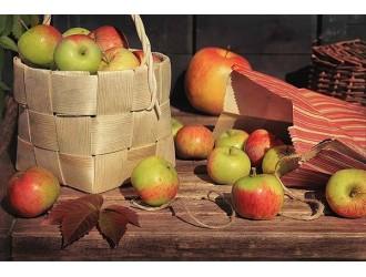"""""""Жовтень яблука солодкі дістає із рукава, хоч далеко це не літо, але ще і не зима"""""""