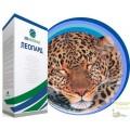Насіння цукрового буряка Леопард категорія Фермер (дражоване, оброблене)